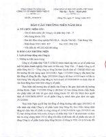 Báo cáo thường niên năm 2014 - Công ty Cổ phần Thép Việt Ý