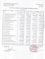 Báo cáo KQKD hợp nhất quý 1 năm 2012 - Công ty Cổ phần Bất động sản Du lịch Ninh Vân Bay