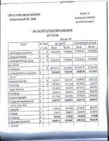 Báo cáo KQKD quý 2 năm 2010 - Công ty Cổ phần Đầu tư và Phát triển Dự án Hạ tầng Thái Bình Dương