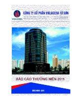 Báo cáo thường niên năm 2011 - Công ty Cổ phần Viglacera Từ Sơn