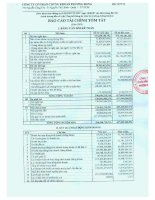 Báo cáo tài chính năm 2008 - Công ty cổ phần Chứng khoán Phương Đông