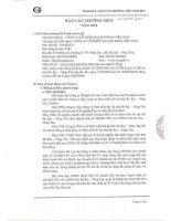 Báo cáo thường niên năm 2010 - Công ty Cổ phần Du lịch Thành Thành Công