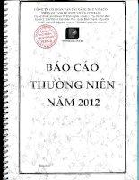Báo cáo thường niên năm 2012 - Công ty Cổ phần Vận tải Xăng dầu VITACO