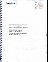 Báo cáo tài chính quý 2 năm 2014 (đã soát xét) - Công ty Cổ phần Kinh doanh Dịch vụ cao cấp Dầu khí Việt Nam