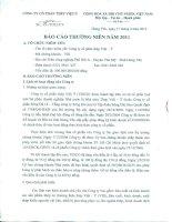 Báo cáo thường niên năm 2011 - Công ty Cổ phần Thép Việt Ý