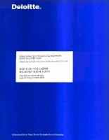Báo cáo tài chính năm 2008 (đã kiểm toán) - Tổng Công ty Cổ phần Tái bảo hiểm quốc gia Việt Nam