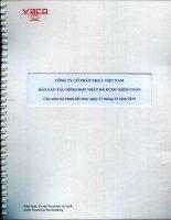 Báo cáo tài chính hợp nhất năm 2015 (đã kiểm toán) - CTCP Nhựa Việt Nam