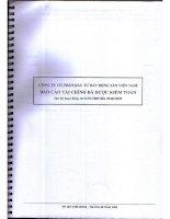 Báo cáo tài chính quý 2 năm 2009 (đã kiểm toán) - Công ty cổ phần Đầu tư Bất động sản Việt Nam