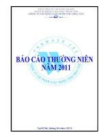 Báo cáo thường niên năm 2011 - Công ty cổ phần Cấp nước Phú Hòa Tân