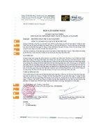 Báo cáo tài chính năm 2009 (đã kiểm toán) - Công ty Cổ phần Vật liệu xây dựng Bến Tre