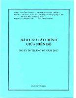 Báo cáo tài chính quý 2 năm 2013 - Công ty Cổ phần Thức ăn Chăn nuôi Việt Thắng