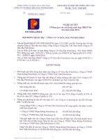 Nghị quyết Hội đồng Quản trị ngày 29-03-2011 - Tổng Công ty Hóa dầu Petrolimex-CTCP