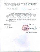Báo cáo tài chính quý 4 năm 2008 - Tổng Công ty Dung dịch khoan và Hóa phẩm Dầu khí-CTCP