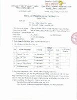 Báo cáo tình hình quản trị công ty - Công ty Cổ phần Đầu tư và Phát triển Năng lượng Việt Nam