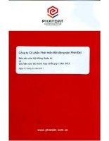 Báo cáo tài chính hợp nhất quý 1 năm 2011 - Công ty cổ phần Phát triển Bất động sản Phát Đạt