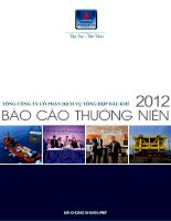 Báo cáo thường niên năm 2012 - Tổng Công ty Cổ phần Dịch vụ Tổng hợp Dầu khí