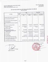 Báo cáo KQKD công ty mẹ quý 3 năm 2012 - Công ty Cổ phần Bất động sản Du lịch Ninh Vân Bay