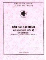 Báo cáo tài chính hợp nhất quý 4 năm 2011 - Tổng công ty Cổ phần Xây dựng điện Việt Nam