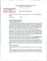 Báo cáo thường niên năm 2009 - Công ty Cổ phần Đầu tư và Xây dựng Bưu điện
