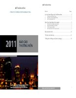 Báo cáo thường niên năm 2011 - Công ty Cổ phần Chứng khoán VINA