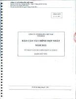 Báo cáo tài chính hợp nhất năm 2012 - Công ty Cổ phần Sữa Việt Nam