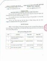 Nghị quyết Đại hội cổ đông thường niên năm 2013 - Công ty Cổ phần Đầu tư và Phát triển Năng lượng Việt Nam