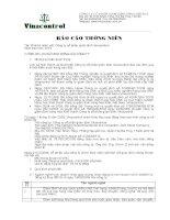 Báo cáo thường niên năm 2010 - Công ty Cổ phần Tập đoàn Vinacontrol
