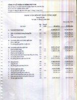 Báo cáo tài chính năm 2010 - Công ty Cổ phần Xi măng Phú Thọ