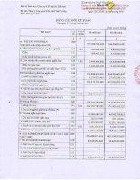 Báo cáo tài chính công ty mẹ quý 4 năm 2012 - Công ty cổ phần Địa ốc Dầu khí