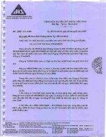 Báo cáo tài chính năm 2007 (đã kiểm toán) - Công ty Cổ phần Du lịch Thành Thành Công