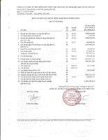 Báo cáo KQKD hợp nhất quý 2 năm 2012 - Công ty cổ phần Đầu tư Bất động sản Việt Nam