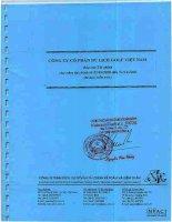 Báo cáo tài chính năm 2008 (đã kiểm toán) - Công ty Cổ phần Du lịch Thành Thành Công