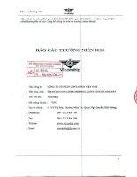 Báo cáo thường niên năm 2010 - Công ty cổ phần Tập đoàn Container Việt Nam