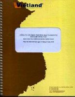 Báo cáo tài chính năm 2010 (đã kiểm toán) - Công ty Cổ phần Thương mại và Dịch vụ Dầu khí Vũng Tàu