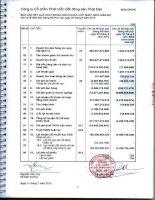 Báo cáo KQKD hợp nhất quý 2 năm 2010 (đã kiểm toán) - Công ty cổ phần Phát triển Bất động sản Phát Đạt