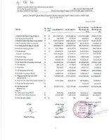 Báo cáo KQKD hợp nhất quý 3 năm 2012 - Công ty Cổ phần Tập đoàn Đại Dương