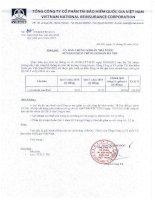 Báo cáo tài chính hợp nhất quý 1 năm 2015 - Tổng Công ty Cổ phần Tái bảo hiểm quốc gia Việt Nam