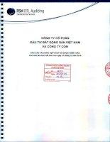 Báo cáo tài chính hợp nhất năm 2014 (đã kiểm toán) - Công ty cổ phần Đầu tư Bất động sản Việt Nam