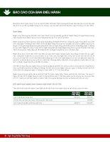Báo cáo tài chính hợp nhất năm 2010 (đã kiểm toán) - Ngân hàng Thương mại Cổ phần Việt Nam Thịnh Vượng