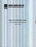 Báo cáo thường niên năm 2013 - Công ty cổ phần Chứng khoán Dầu khí