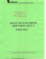 Báo cáo tài chính hợp nhất quý 2 năm 2013 - Công ty cổ phần Đầu tư Bất động sản Việt Nam