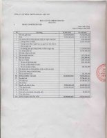 Báo cáo tài chính năm 2007 - Công ty Cổ phần Chứng khoán Việt Tín