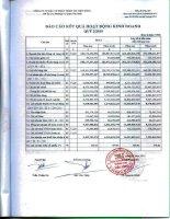 Báo cáo KQKD quý 2 năm 2010 - Công ty Cổ phần Đầu tư Phát triển Thương mại Viễn Đông