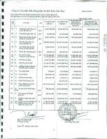 Báo cáo KQKD hợp nhất quý 2 năm 2011 - Công ty Cổ phần Bất động sản Du lịch Ninh Vân Bay