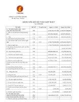 Báo cáo tài chính hợp nhất quý 2 năm 2008 - Tập đoàn Vingroup - Công ty Cổ phần