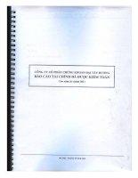 Báo cáo tài chính năm 2011 (đã kiểm toán) - Công ty Cổ phần Chứng khoán ĐẠI TÂY DƯƠNG