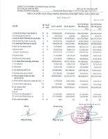Báo cáo KQKD hợp nhất quý 4 năm 2012 - Công ty Cổ phần Tập đoàn Đại Dương