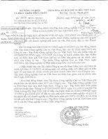 Báo cáo tài chính công ty mẹ năm 2013 (đã kiểm toán) - Tập đoàn Công nghiệp Cao su Việt Nam