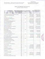 Báo cáo tài chính quý 4 năm 2012 - Công ty Cổ phần Chứng khoán Đại Dương