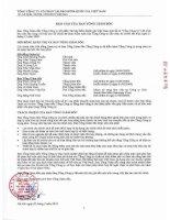 Báo cáo tài chính năm 2009 (đã kiểm toán) - Tổng Công ty Cổ phần Tái bảo hiểm quốc gia Việt Nam